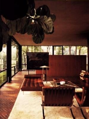 glasshouse-interior