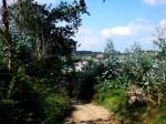 181-santiago-del-monte-a-la-vista